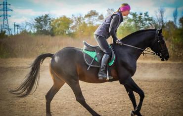 Экскурсия в конную школу и ипподром для школьников и групп детей