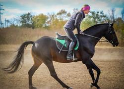 Экскурсия в конную школу